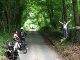 Enjoying the beech woods on the way to Farmington