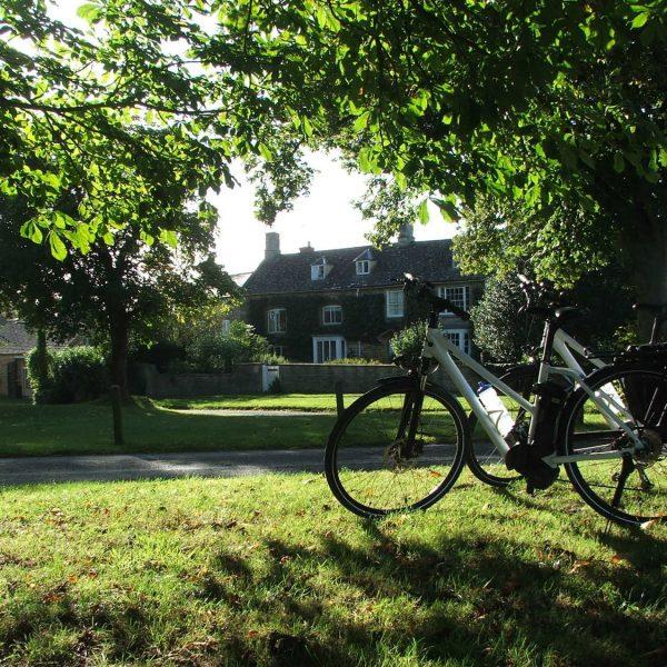 Kingham green