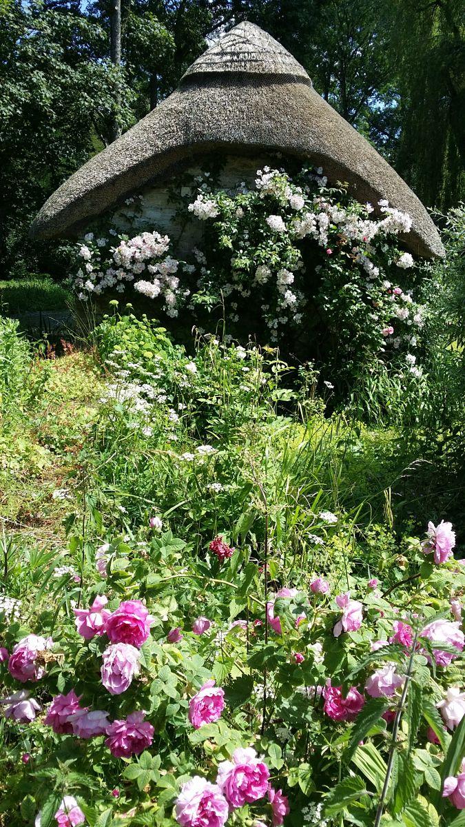 Beautiful Cotswold garden